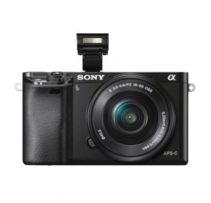Sony working to put a mirrorless camera out, the a6000